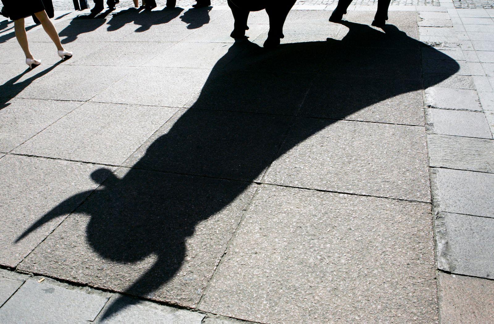 Schatten / Börse / Bulle