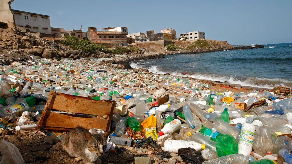 Plastikmüll am Strand von Senegal: Die Kunststoffe bedrohen die Gesundheit von Menschen, Tieren und Natur