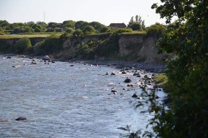 Klein, aber fein - vor allem für Vogelfreunde: Die Greifswalder Oie ist eine der unbekanntesten Inseln der Ostsee.