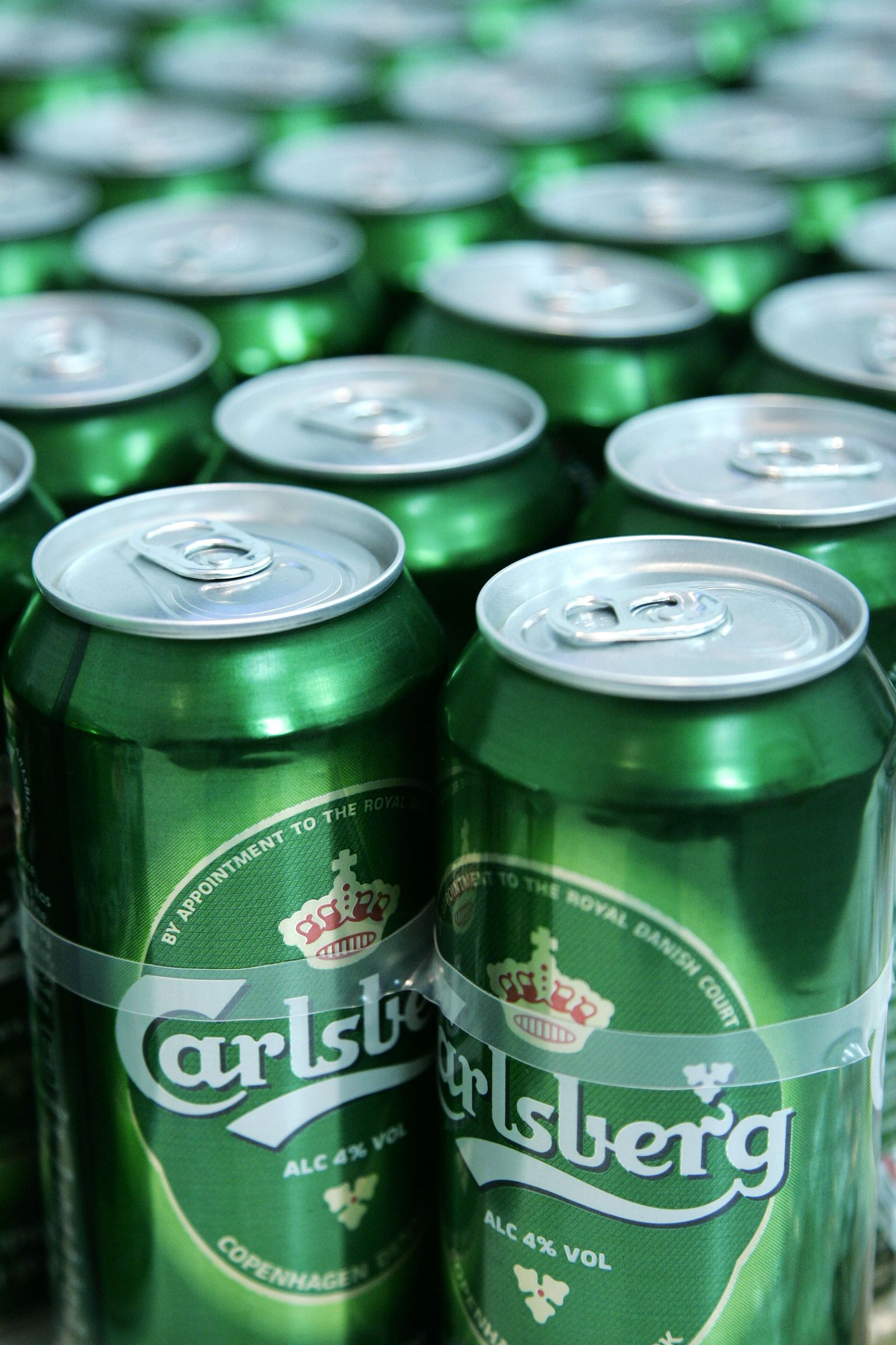 Heineken Carlsberg Bier Dosenbier