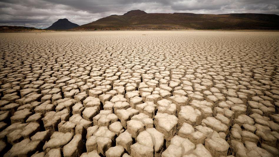 Green Deal statt Krieg: Der Kampf gegen den Klimawandel schafft die Grundlage für neue Nachfrage, die dann über staatlichen Konjunkturprogramme und die Ausweitung der Geldmenge finanziert wird