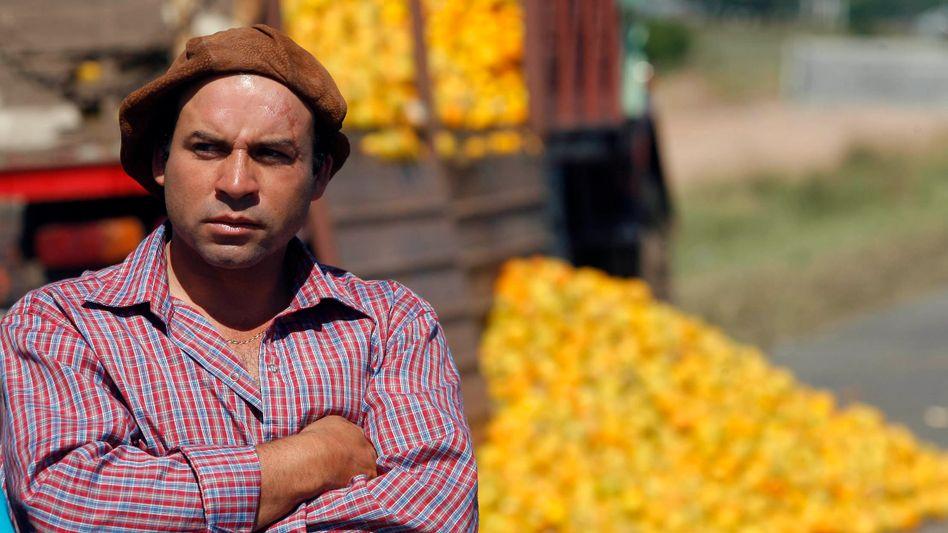 10 Prozent Steuern auf die Ausfuhren: Die Pläne von Argentiniens Präsident Macri werden vor allem die Landwirte treffen