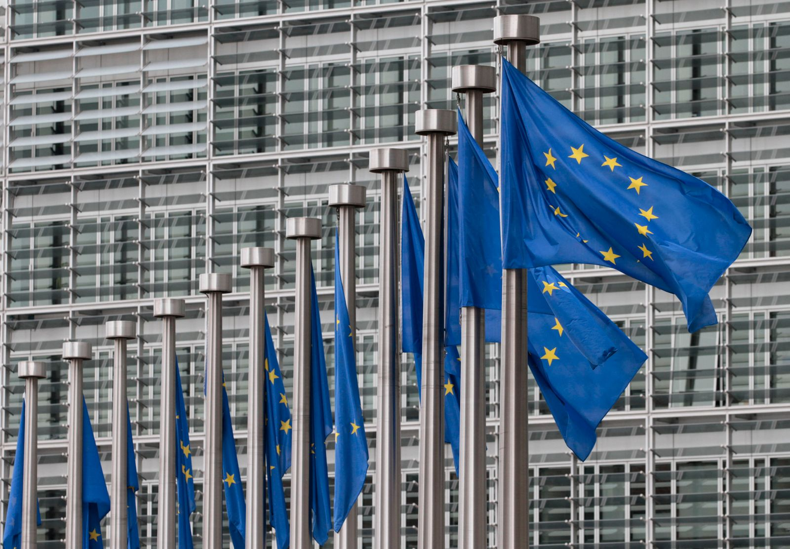 Europäisches Parlament / Fahne