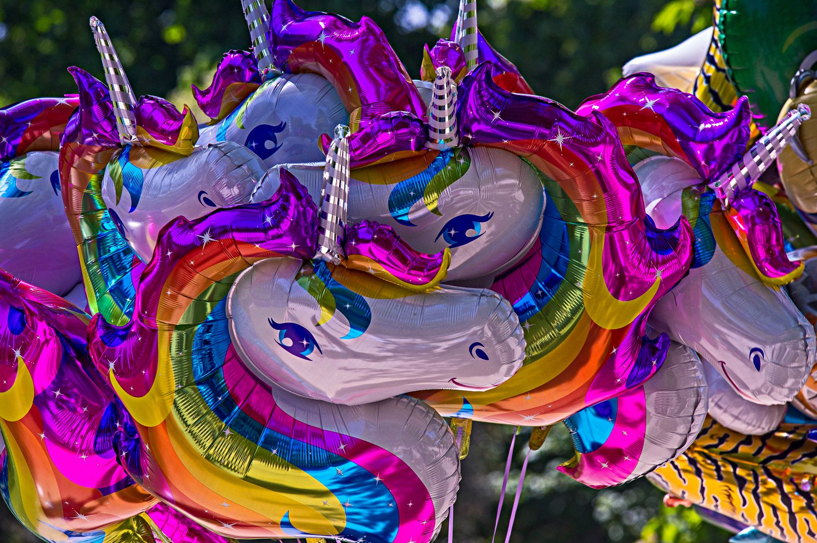 Close up of colorful unicorn balloons