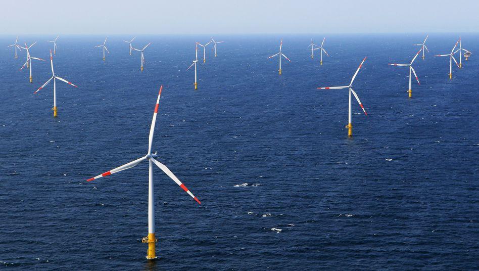 Windkrafterzeugung auf hoher See: Die Allianz Leben prüft derzeit, das Geld ihrer Kunden verstärkt in solche Projekte zu investieren