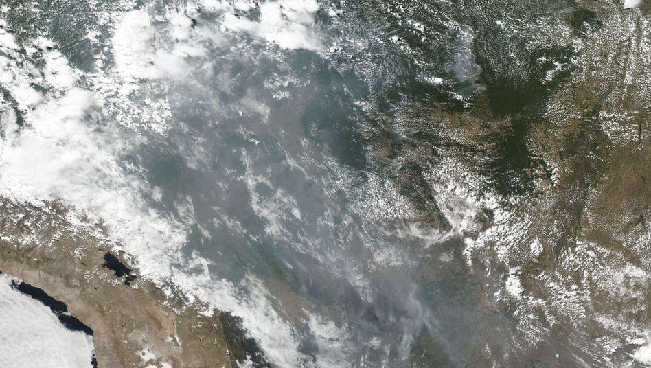 Rauch über dem Amazonas: Die Aufnahme der NASA zeigt das Ausmaß der verheerenden Brände