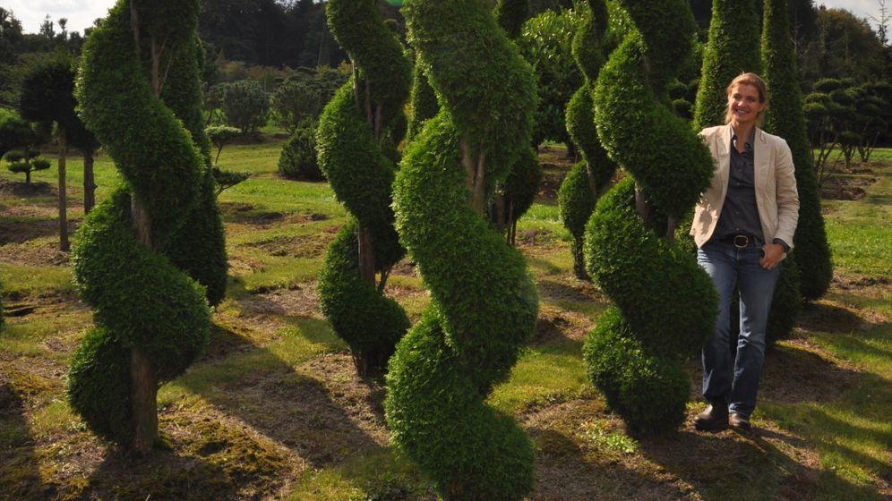 Edle Bäume: Wachsende Schönheiten
