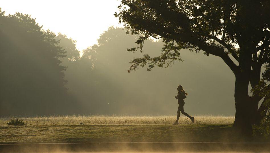 Herbstzeit: Laufen, wenn sich andere schon Winterspeck anfuttern