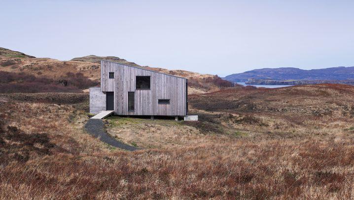 Hen House: Schottenrockys