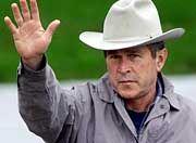 Siegessicher: George W. Bush