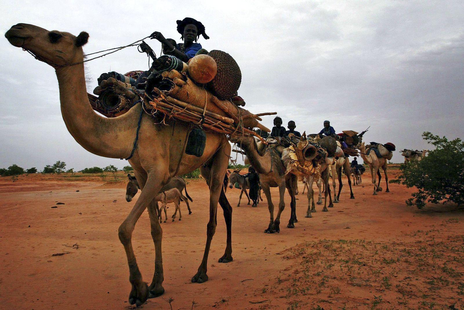 Niger/ Tuareg