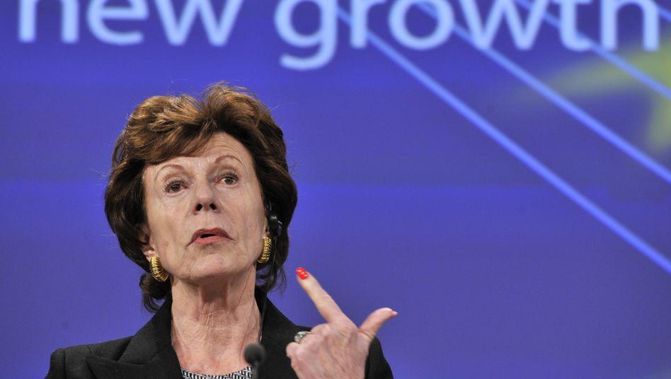 Neelie Kroes: Die ehemalige EU-Digitalkommissarin will die Niederlande zum europäischen Start-up-Paradies machen