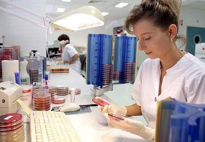 Gute Jobchancen: Der Anteil an Frauen in der Pharmabranche ist hoch
