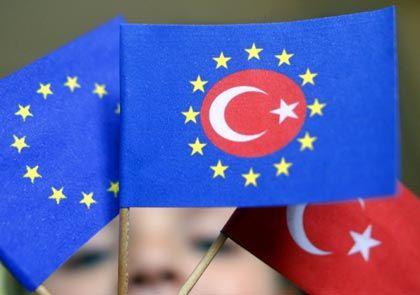 """""""Bei der EU-Gründung waren die Wertorientierungen der meisten Deutschen denen der Türken von heute vermutlich ähnlicher als denen der heutigen Bundesbürger."""""""