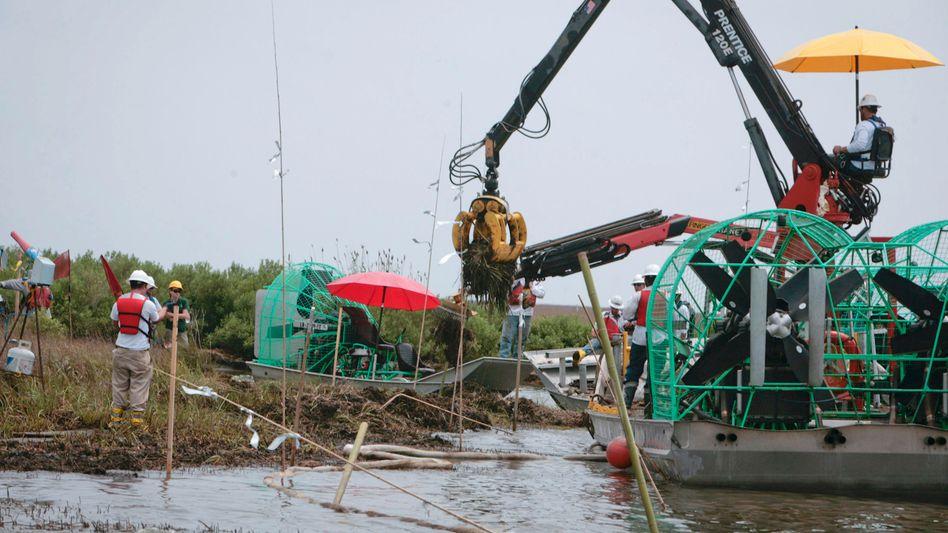 Aufräumarbeiten: Die Folgen der verheerenden Ölpest im Golf von Mexiko sind noch längst nicht bewältigt