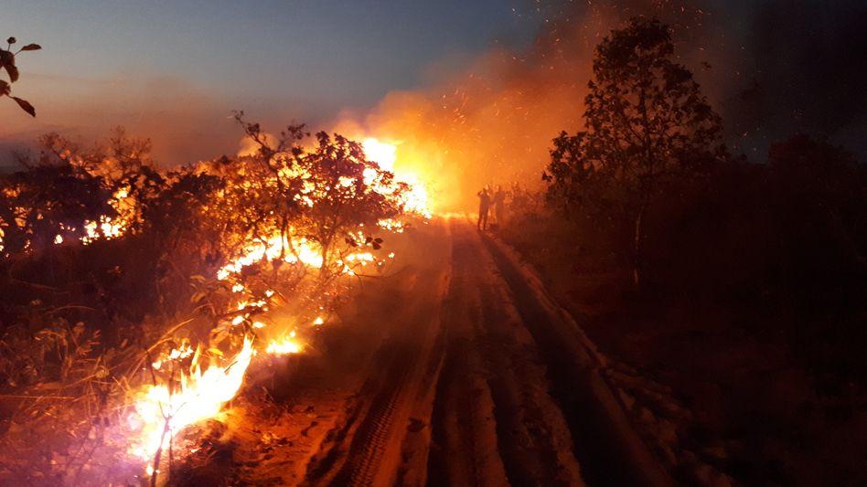 Waldbrand in Brasilien: Brasiliens Präsident Jair Bolsonaro hat erst Rodungen des Amazonas-Regenwalds das Wort geredet, um landwirtschaftliche Flächen zu gewinnen. Seit gelegte Waldbrände außer Kontrolle gerieten, behauptete er, andere hätten Schuld
