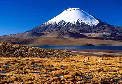 Chungara-Vulkan: Ein Beispiel für Chiles Reichtum an unterschiedlicher Natur