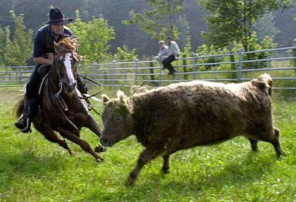 Cowboymäßig: Lang ist's her