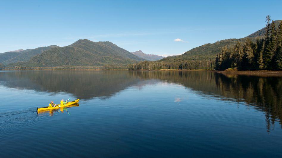 Tongass National Forest in Alaska: Dies ist eines der größten Stücke intakten gemäßigten Regenwaldes