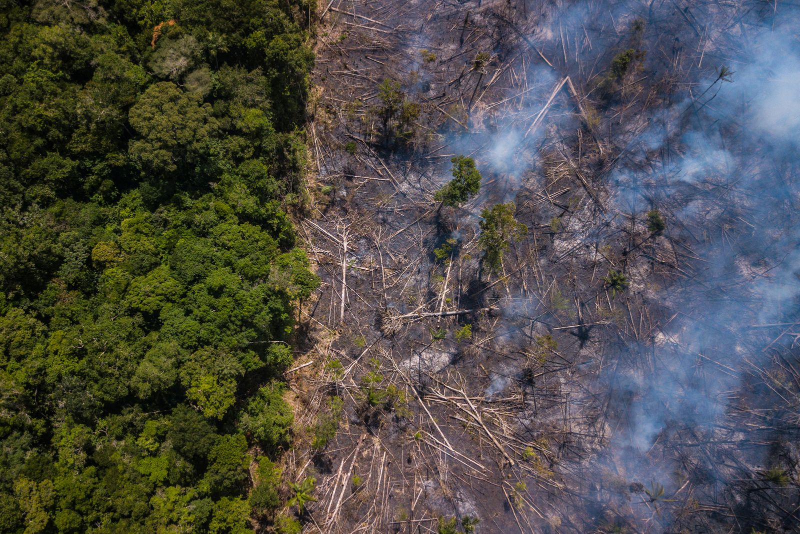 Views Of Amazonian States As Brazil Mine Disaster Prompts Bolsonaro To Rethink Environment