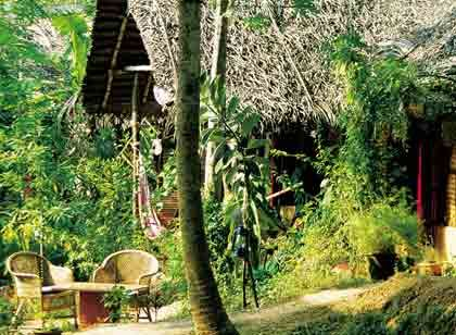 Fünf-Sterne-Resort: Ayurveda - Agastya Garden in Kerala