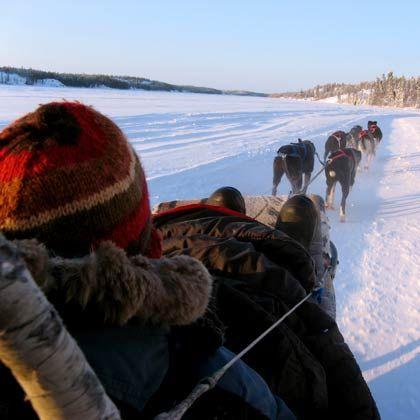 Hunde voraus: Bei tiefen Schnee ist der Hundeschlitten das Verkehrsmittel der Wahl