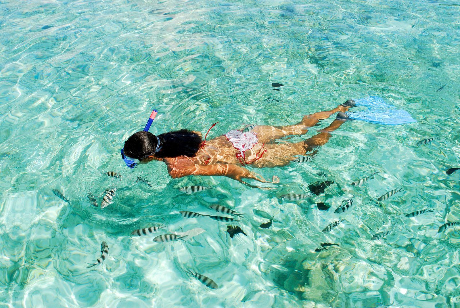 EINMALIGE VERWENDUNG «Träume jetzt» - Ein Segeltörn durch die Seychellen