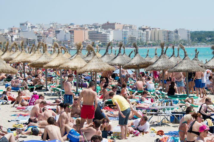 Strand von Arenal, Mallorca (Archivbild): Wie die beliebte Ferieninsel leiden etliche Top-Destinationen darunter, dass einfach zu viele Leute kommen
