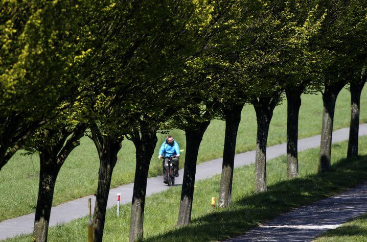 Radler am Dortmund-Ems-Kanal