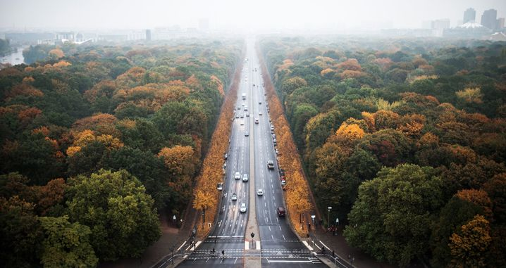 Nebel über Berlins Großem Tiergarten