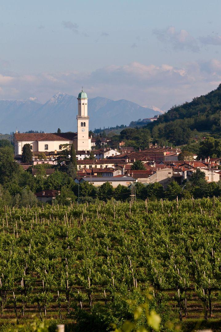 Cormòns liegt im Hinterland von Friaul-Julisch Venetien nahe der slowenischen Grenze - eine Weinbauregion.