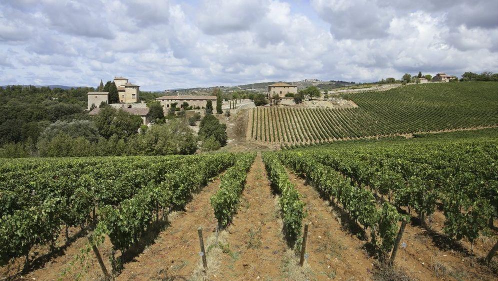 Weinverkostung: Die besten Tropfen der Toskana