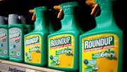 US-Gericht mildert Glyphosat-Urteil gegen Bayer stark ab