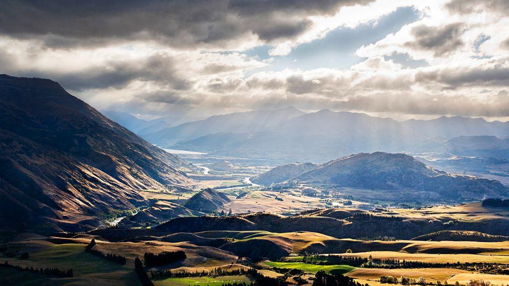 Neuseeland: Hirsche für Deutschland