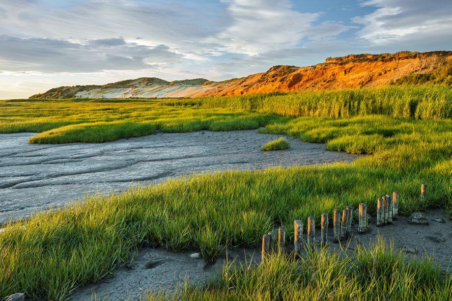 Wilde Landschaft: In betörendenNaturfarben erstrahlt das Morsumer Kliff auf Sylt