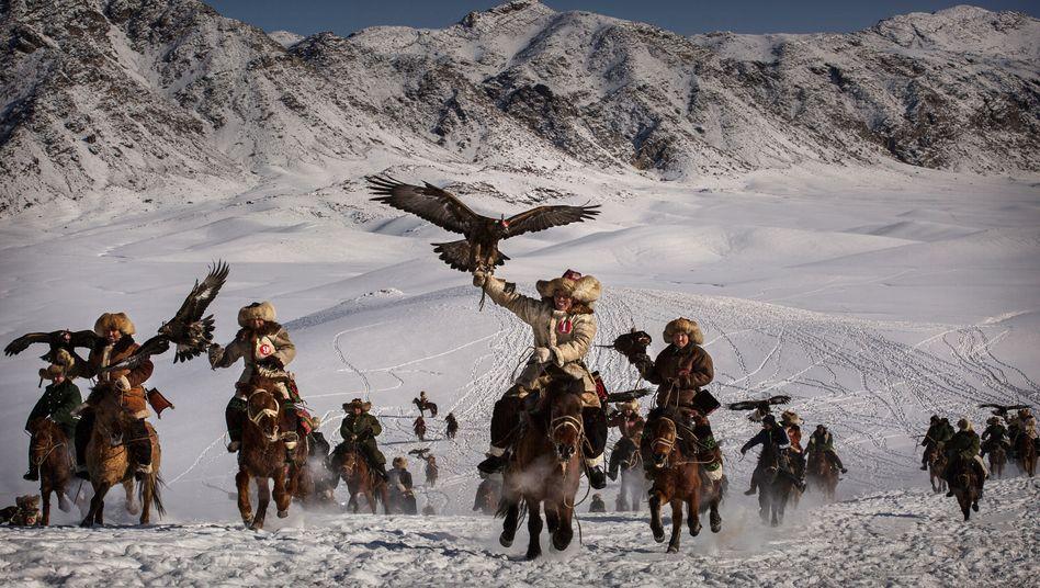 """Nichts stört den Flug des Adlers: Bei dieser Jagd in China kommen die Greifvögel zum Einsatz. Eine ähnlich ruhige Hand wie die Jäger brauchen auch die Fondsmanager der """"Allwetter-Fonds"""""""