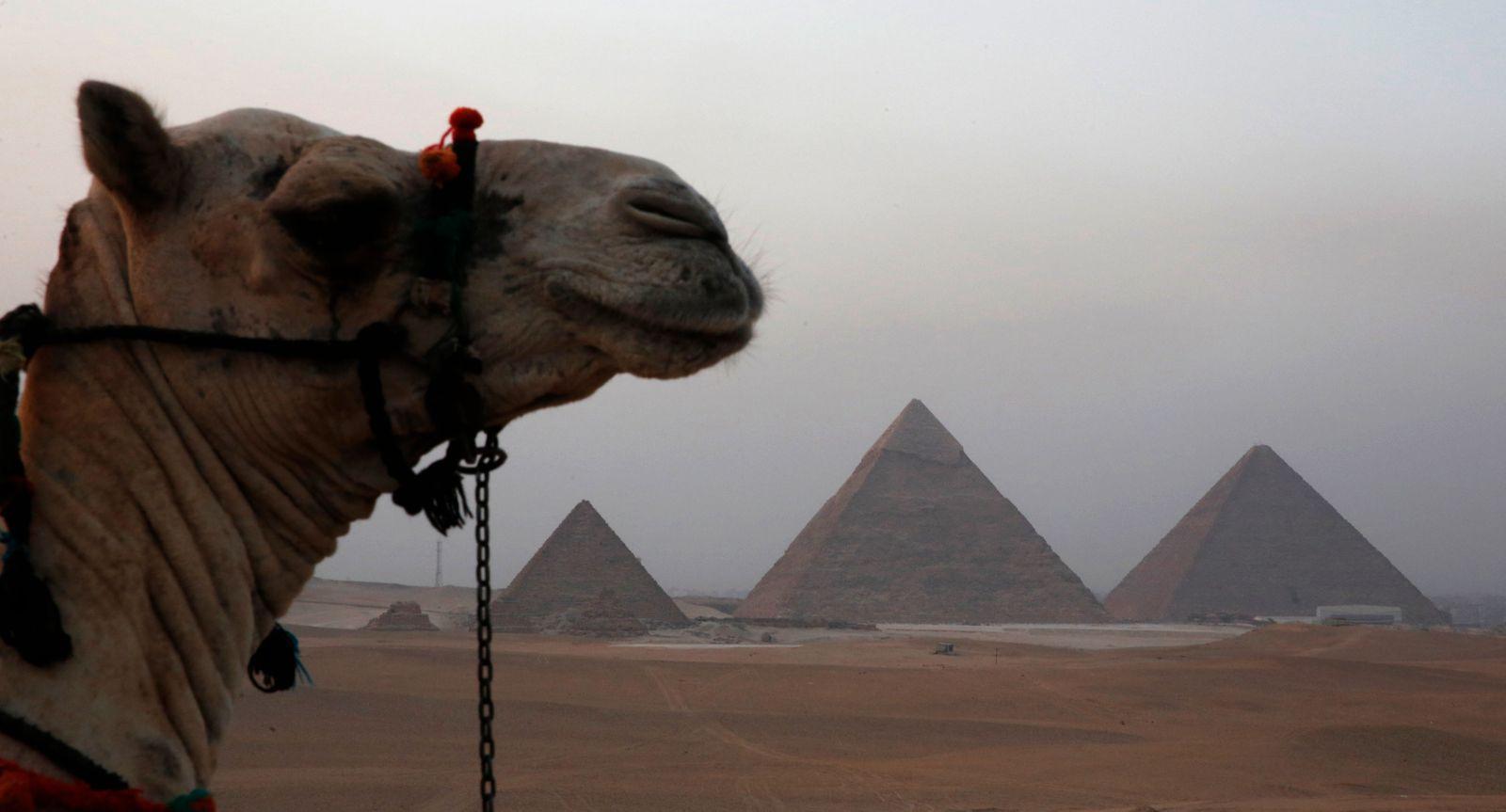 Ägypten / Wahl / Pyramiden von Gizeh