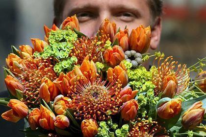 Exportschlager: Holland ist der größte Tulpenproduzent der Welt
