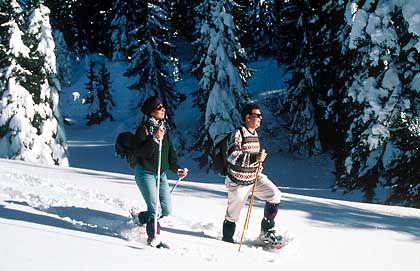 Sanfter Tourismus: Immer mehr Touristen bewegen sich auf Schneeschuhen durch die Winterlandschaft