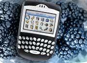 Erfolgsmodell: Blackberry 7290