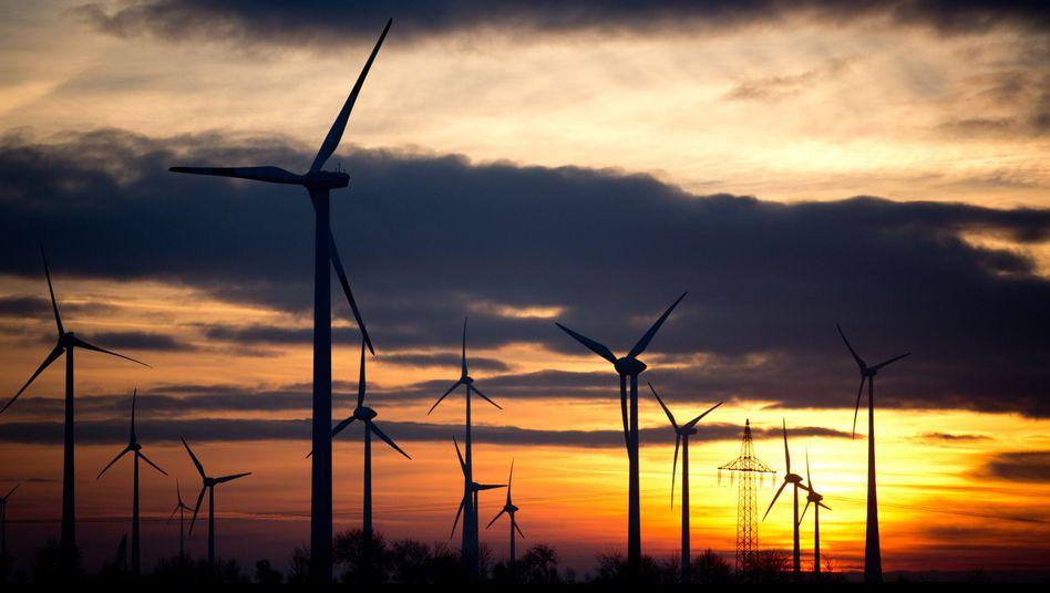Windräder in Sachsen: Deutschland zaudert bei der Energiewende
