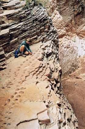 Grand Canyon: Schlucht auf mehr als 2000 Meter Höhe über dem Meeresspiegel