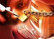 Internetkriminalität: Tor und Tür sind nur selten verschlossen