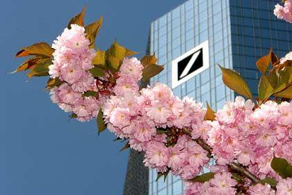 Mehr Verantwortung für Rainer Rauleder: Zentrale der Deutschen Bank in Frankfurt