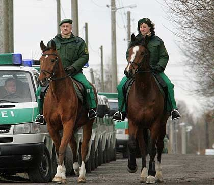 Wieder unterwegs im Revier: Die Dortmunder Polizei hat ihre Pferdestaffel geleast