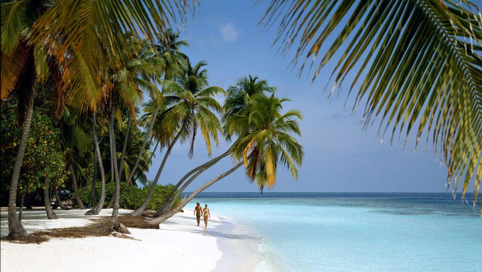 Traumstrand: Für 14 Millionen Dollar steht eine Insel in den Malediven zum Verkauf