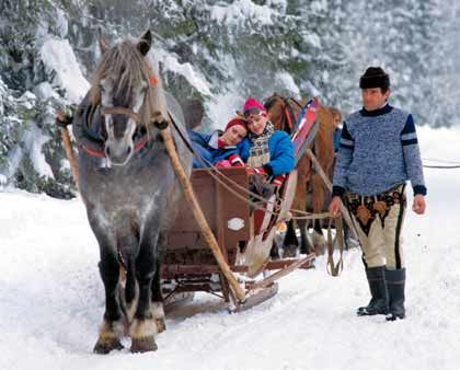 Fortbewegung mit einem PS: Touristen können auf der polnischen Seite der Hohen Tatra auch mit dem Pferdeschlitten zurück ins Quartier fahren