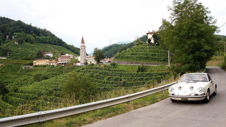 Prosecco-Anbaugebiet in Valdobbiadene: Günstiges Sommerwetter hat für eine Rekordernte gesorgt