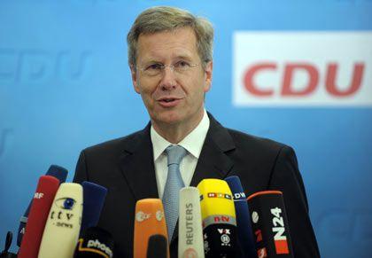 """CDU-Politiker Wulff: """"Ich werde ein solches Programm nicht mittragen"""""""