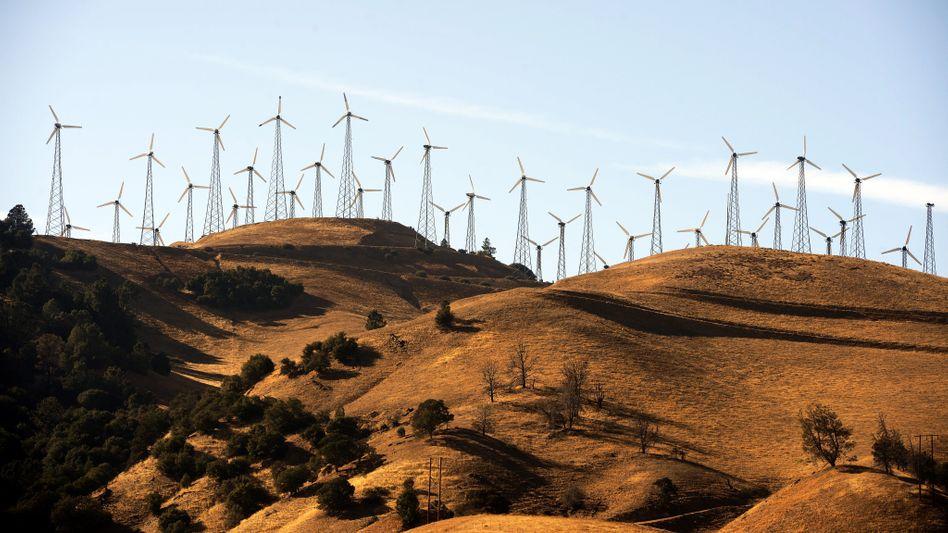 Auch in den USA gewinnt Windenergie an Bedeutung - wie hier in einem Windpark in Kalifornien